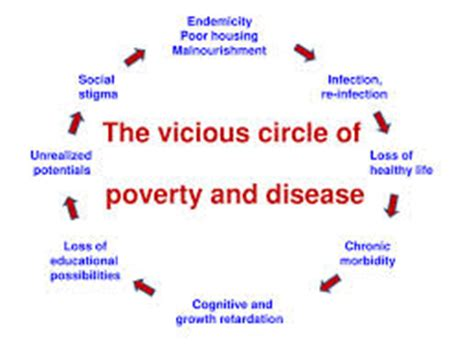 Define the culture of poverty thesis